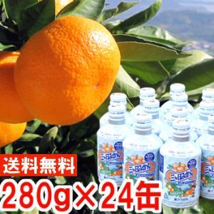 ジュース ギフト 三ケ日青島みかんジュース24缶入り1箱|muskmelon