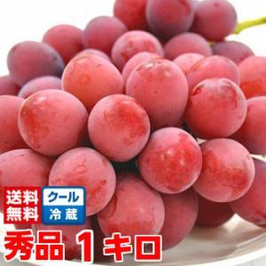 長野県産クイーンニーナ 秀品3Lサイズ 1Kg|muskmelon
