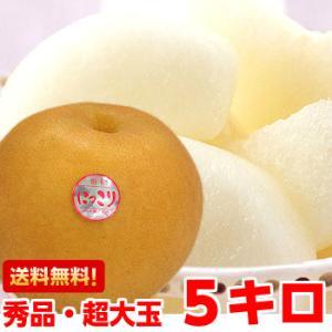 栃木県産 にっこり梨 秀品5kg|muskmelon