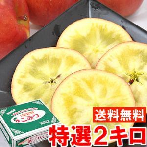 青森県産こみつりんご 特選2kg|muskmelon