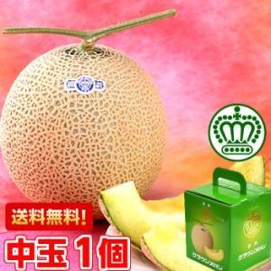 静岡県産 クラウンメロン 中玉1.3kg前後1個|muskmelon