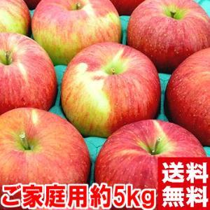 長野県産 シナノスイート 訳あり5kg|muskmelon