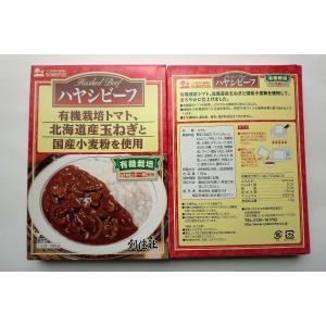 無添加 ハヤシビーフ(レトルト) 180g(1人分)×2箱|mutumiya-web