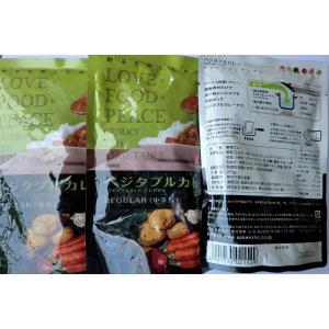 無添加 ベジタブルカレーREGULAR【中辛】レトルト 210g×3袋|mutumiya-web