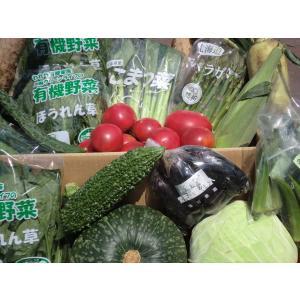 むつみ屋 旬の有機野菜セット10〜12品|mutumiya-web