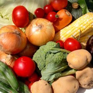 むつみ屋 旬の有機野菜セット13品|mutumiya-web