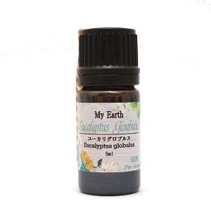エッセンシャルオイル ユーカリ 5ml (アロマオイル、天然100%、ピュア精油)|my-earth