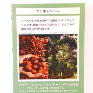 ティーライトキャンドル 10個入り 植物生まれのエコキャンドル|my-earth|02