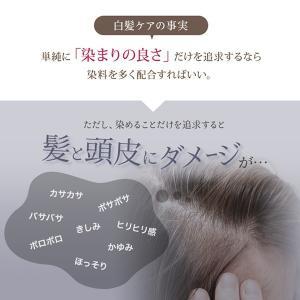 カラートリートメント ダークブラウン 3本セット 白髪 白髪染め 女性用 レディース  マイナチュレ 公式 ヘアカラー スカルプ 頭皮ケア 無添加 国産 オーガニック|my-nature-jp|07