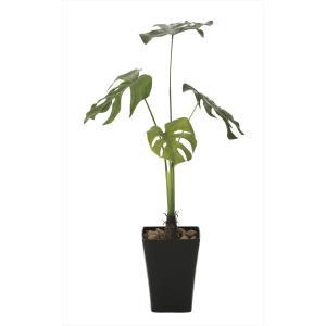光の楽園 人工観葉植物光触媒 モンステラ90 消臭、防菌 インテリア 雑貨 家具 625a150