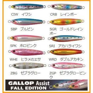ジャクソン ギャロップ アシスト フォール エディション 30g GALLOP Assist fall edition 30g