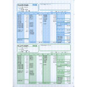 ソリマチ帳票サプライ 給与・賞与明細書(明細タテ型)SR2301|myoffice