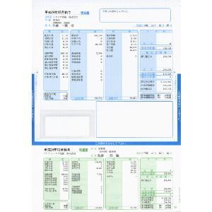 ソリマチ帳票サプライ 給与・賞与明細書(封筒型・シール付き)SR2321|myoffice