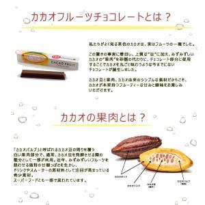 ネスレ日本 キットカット ショコラトリー カカオフルーツチョコレート アソート