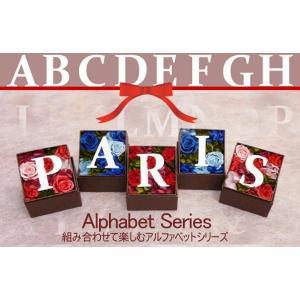 アルファベット プリザーブドフラワー 人気 母の日 内祝い  開店祝い プレゼント 誕生日 クリスマス アルファベットminiBOX|myperidot