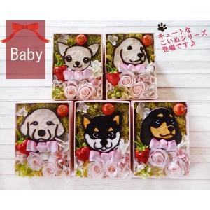 Baby Animal チワワ ダックス ゴールデン 黒 柴犬 誕生日 プレゼント 女性 クリスマス 父の日 母の日 クリスマス お見舞い プリザーブドフラワー ボックス|myperidot