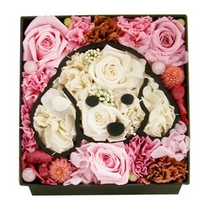 プリザーブドフラワー 犬 プードル クリスマス 母の日 ギフト 誕生日 プレゼント 結婚祝い お祝い 面白いトイプードル アニマルフラワー  愛犬 エクセレント|myperidot