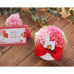 母の日カード付 ペット好きにママに贈るカーネーションのアレンジ母の日 カーネーションドーム プリザーブドフラワー 犬 猫 うさぎ 鳥 フェレット  母の日ギフト myperidot