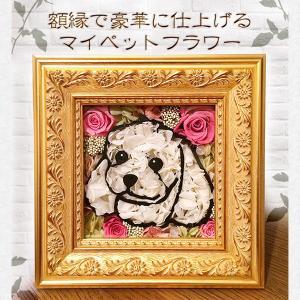 犬 猫 似顔絵 プリザーブドフラワー 誕生日 結婚祝い ギフト プレゼント 敬老の日 クリスマス 父の日 母の日 送料無料 マイペットフラワー(特注額縁入り)|myperidot