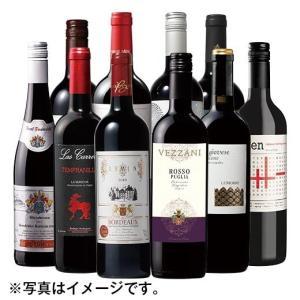 ワインセット  赤ワイン 世界のフルボディ赤10本 福袋 ワ...