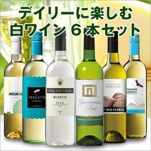 デイリーに楽しむ白ワイン6本セット
