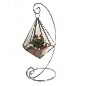 【送料無料】スィング テラリウム(ドロップ)多肉植物 寄せ植え|n-garden