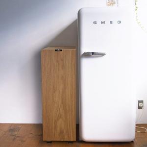 ご注文後2〜3カ月待ちです 橋本達之助工芸 バスク キッチンペール 45L BW 210×440×620Hmm 45L 4.7kg n-kitchen