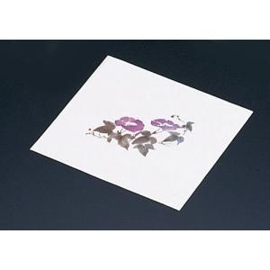 鮮度保持紙(100枚入) アサガオM30-094|n-kitchen