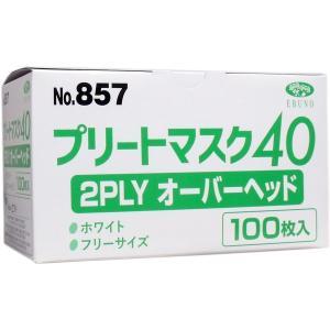 業務用プリートマスク40 2PLY オーバーヘッド フリーサイズ 100枚入 n-kitchen