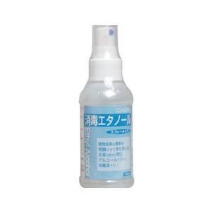 消毒エタノール スプレータイプ 100mL|n-kitchen