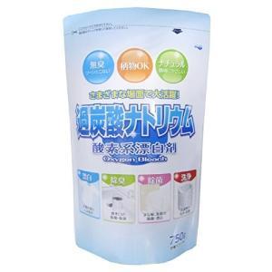 酸素系漂白剤 過炭酸ナトリウム 750g|n-kitchen