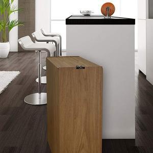 橋本達之助工芸 バスク キッチンペール 45L BW ブラウン 茶色 210×440×H620mm 4.7kg タツクラフト|n-kitchen
