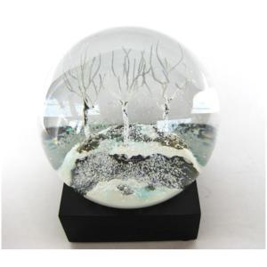 様々な風景をドームに収めたスノードームCool Snow Globe(クールスノーグローブ)。  直...
