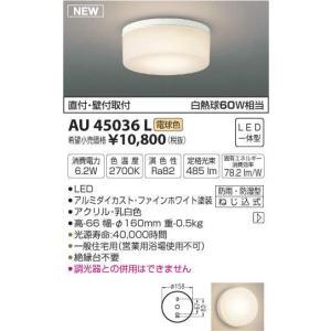 コイズミ照明 白熱灯60W相当 LEDアウトドアライト 軒下・勝手口灯 浴室可 電球色 AU45036L◎|n-lighting