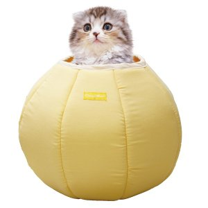 猫用ベッド シャーベットタッチ シェルマリン ころりんベッド 抗菌・防臭 ひんやり 冷感 ペットベッド 春夏|n-style