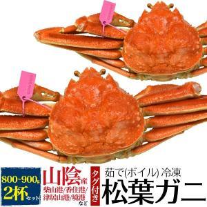 松葉ガニ ズワイガニ 釜ゆで 姿 800g タグ付き お取り寄せ 国産 カニ 蟹 産地直送 冷凍|n-style