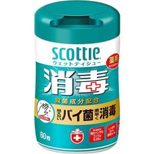 スコッティ ウェットティシュー 消毒 本体 80枚|n-tools