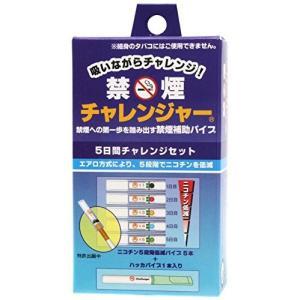 禁煙チャレンジャー (補助パイプ) 東京パイプ|n-tools
