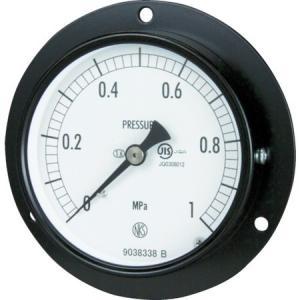 普通形圧力計 長野 AC152316.0MP-5151|n-tools
