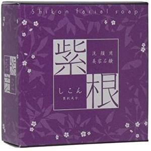 【定形外郵便】進製作所 紫根石鹸 100g|n-yakuhin