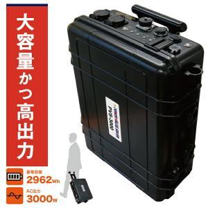 日本プロフィックス・エンジニアリング PVS-3000  (ポータブルバッテリー リチウムイオンバッテリー ポータブル蓄電池 BCP対策) n-yakuhin