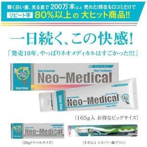 ネオG-1シルバートゥースペースト165g (歯ブラシ+トラベルサイズ付)|nabike