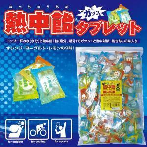 井関食品 熱中飴 タブレット3味ミックス BR-T3000|nabike