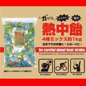 井関食品 熱中飴 4味ミックスパック BR-A2000|nabike