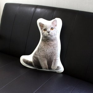 アンダロ ブリティッシュ ショートヘアー 猫柄クッション|nachu