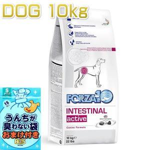 おまけ付き! 最短賞味2020.5・リニューアル品フォルツァ10 インテシティナル アクティブ 中粒10kg 犬用フォルツァディエチ forza10正規品 nachu