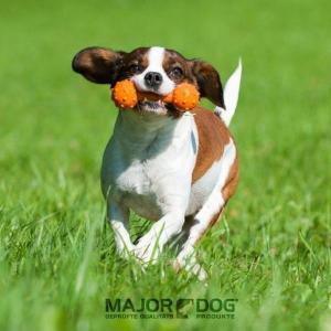 メジャードッグ Barbell mini(バーベル ミニ) 天然ゴム製 犬用おもちゃ MAJOR DOG|nachu