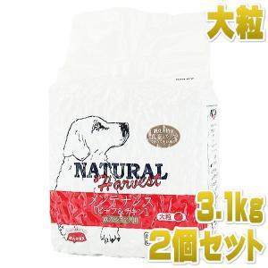 最短賞味2020.10・ナチュラルハーベスト ビーフ&チキン 大粒 3.1kg×2袋|nachu