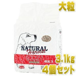 最短賞味2020.10・ナチュラルハーベスト ビーフ&チキン 大粒 3.1kg×4袋|nachu