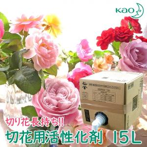 花王 切花用活性化剤PAT 業務用15リットル 切り花 長持ち 延命剤 活力剤|nacole
